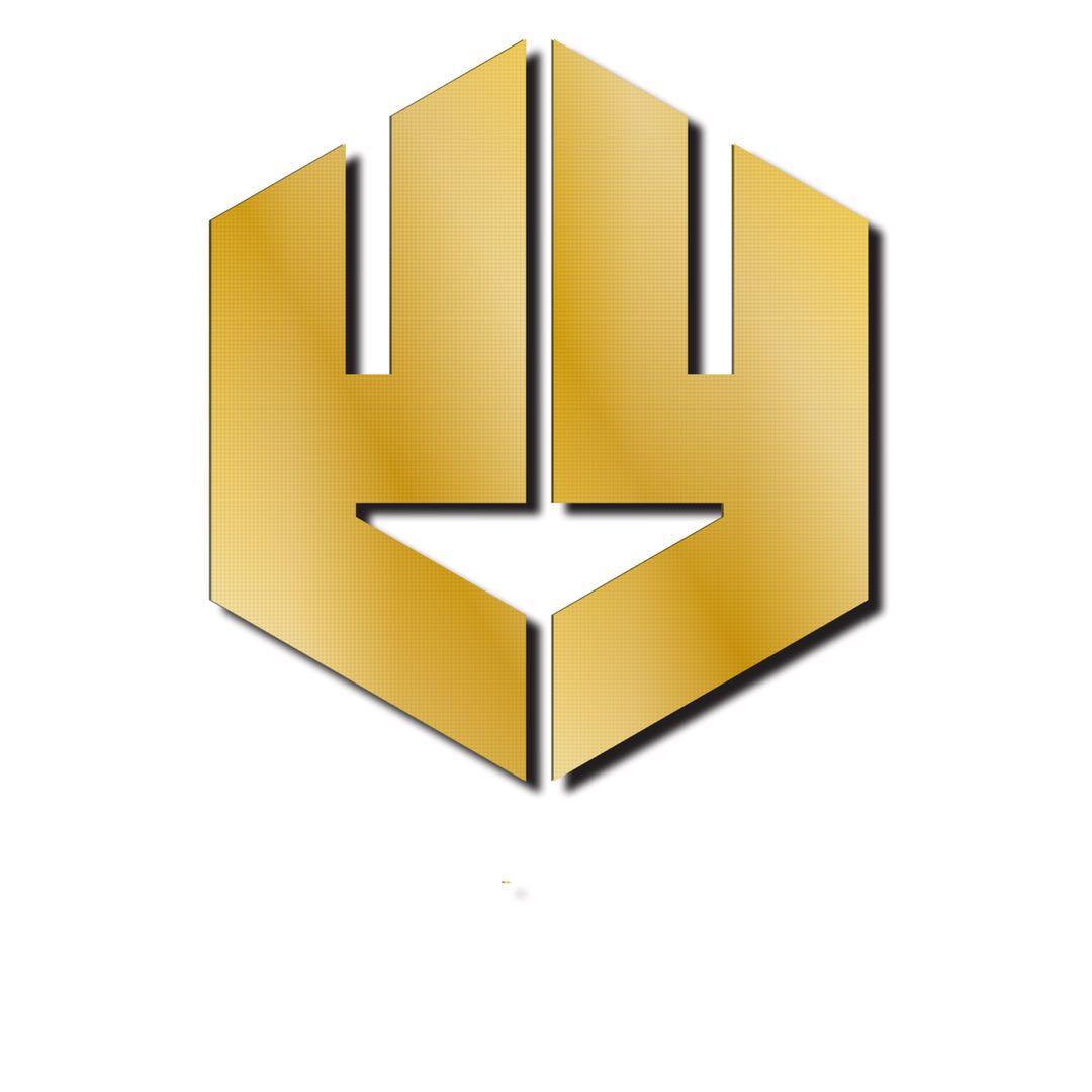 广州赢衍网络科技有限公司logo