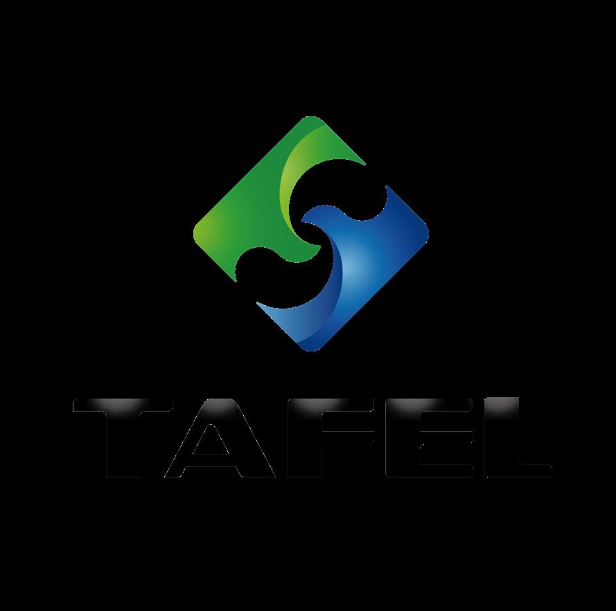东莞塔菲尔新能源科技有限公司logo