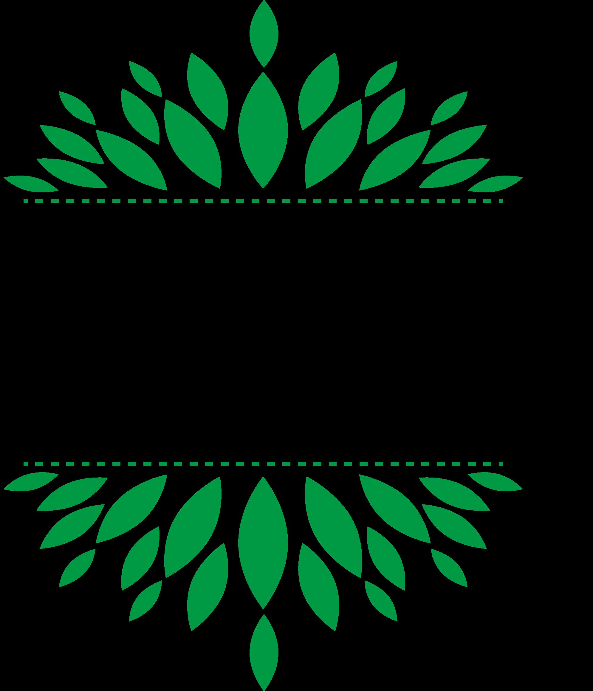 智晟华企业管理有限公司logo