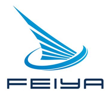 飞亚(深圳)信息科技有限公司logo