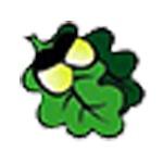 橡果国际集团logo