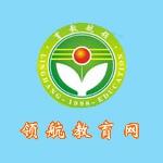 北京领航导航教育集团logo