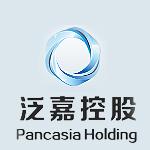 重庆泛嘉控股有限公司logo