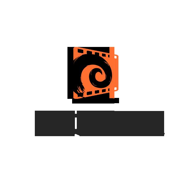湖南影娱文化传媒有限公司 logo