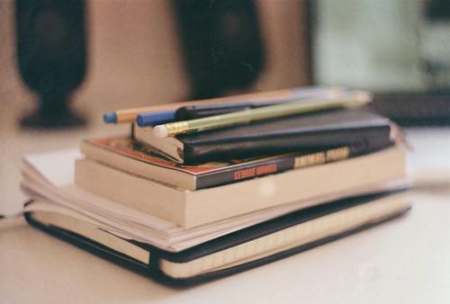 【小学生作文感想怎么写】玛雅作文