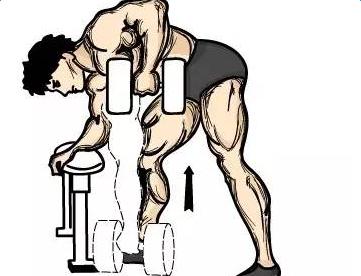 哑铃锻炼肩部肌肉动作图解