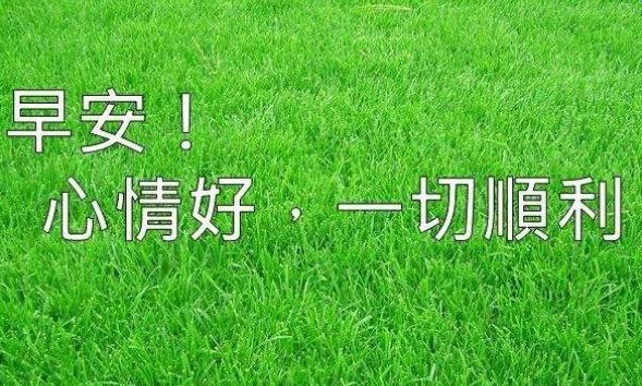 2016微商早安心语励志句子50