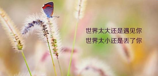 2016微商早安心语励志正能量句子