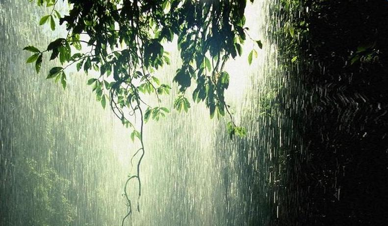 下雨天的心情说说伤感