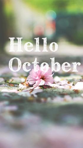 你好十月图片唯美图片大全_小清新你好十月唯美图片