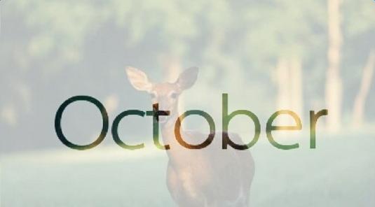 你好十月图片唯美_你好十月开心唯美图片集锦