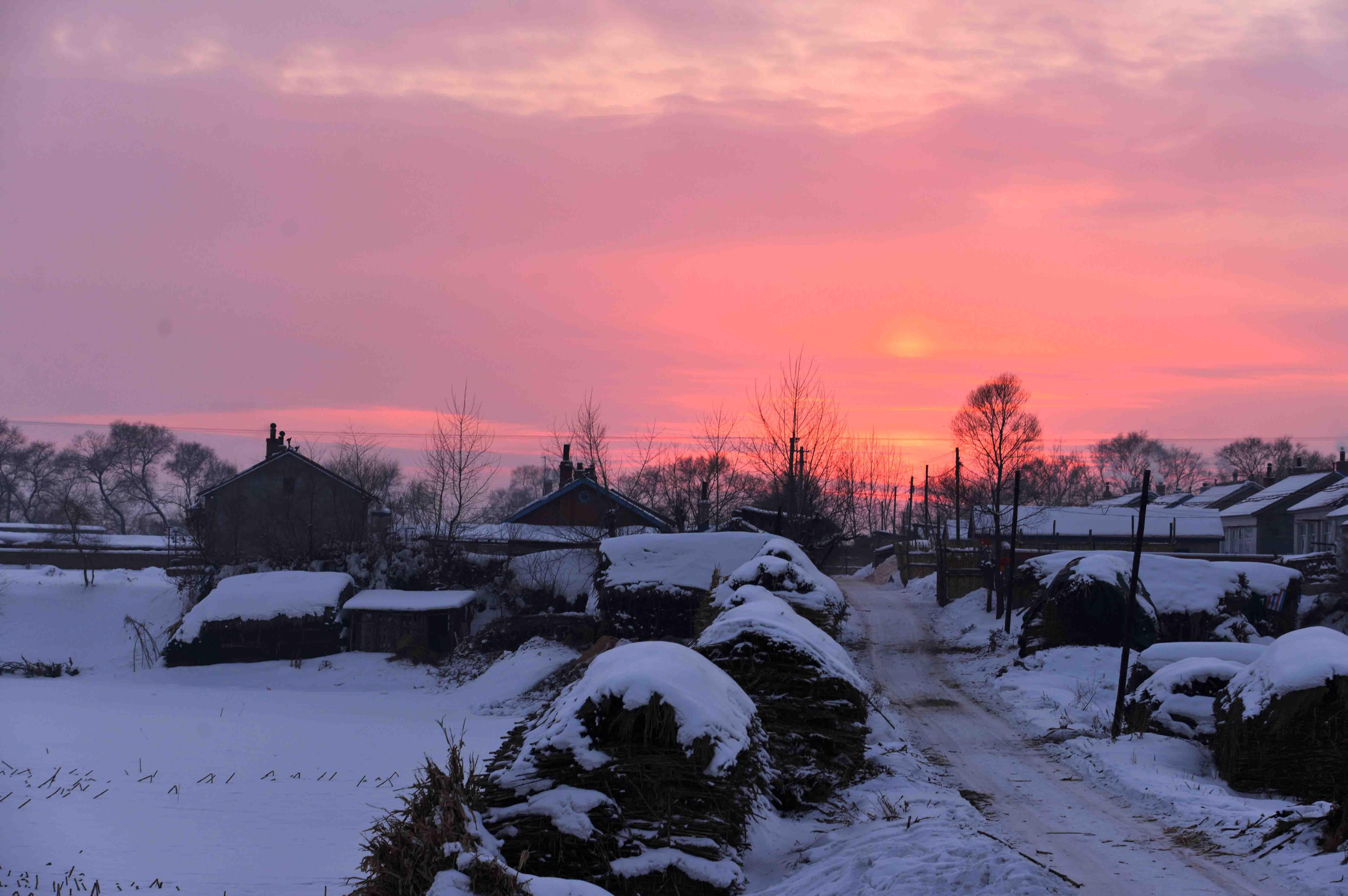 乡村的冬天作文一:乡村的冬天   冬,是一个美丽而纯洁的日子;冬,是一个乖巧可爱的孩子;而乡村的冬,又有什么独特之处呢?   早晨,朦胧的雾飘浮在空中,晨星还没有消失,天就已经蒙蒙亮了。远处的小山包,原来翠绿的小草干枯了,还披上了一件雪白的棉袄,等待着春天再发芽   上午,我来到了野外,顺着弯弯曲曲的小路一直走,两旁栽种着花草树木,可与春天大不相同,花花草草都枯萎了,原本的参天大树,茂盛的叶子落了下来。唯有松树还苍翠欲滴,粗壮的树干,似乎要好几个人围着才行。他站的笔直笔直的,活像边疆守卫的解放军战