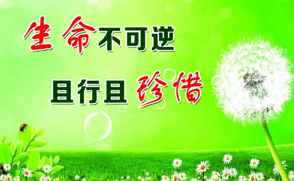 2016安全教育平台黑龙江省登录入口