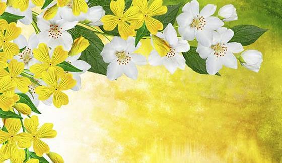 描写桂花的诗句