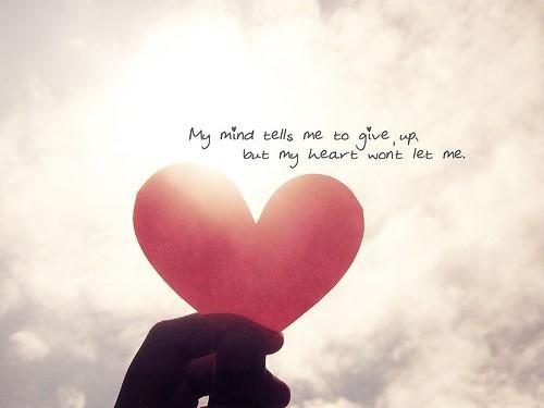 表达想挽回爱情的句子