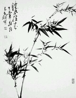 关于竹子的诗句古诗