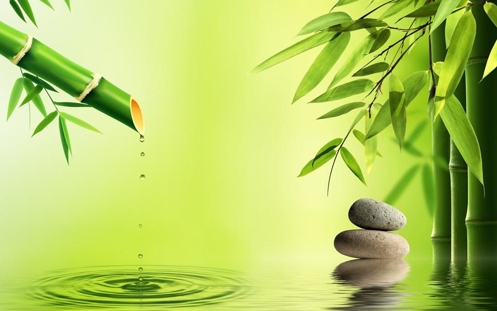 有关竹子的诗句