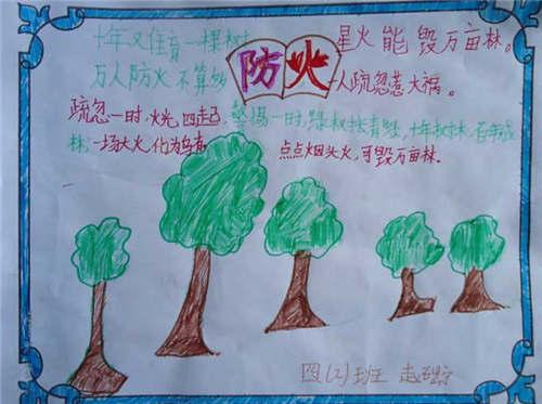 2017小学生森林防火手抄报资料:保护森林资源的图片