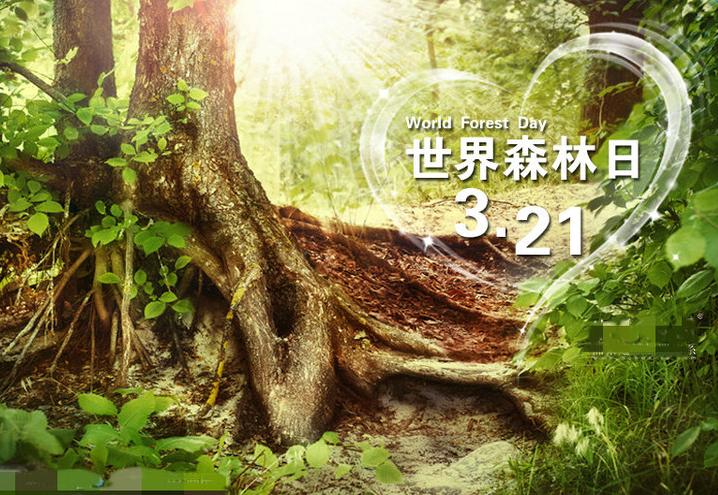3月21日世界森林日的由来及意义