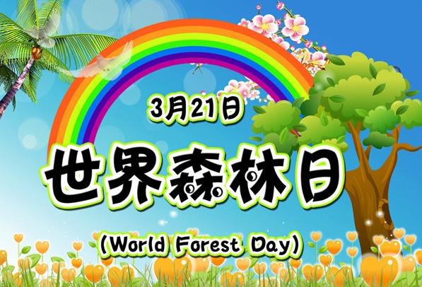 2017世界森林日宣传语大全