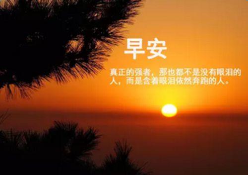 一句话早安心语_正能量早安心语图片大全