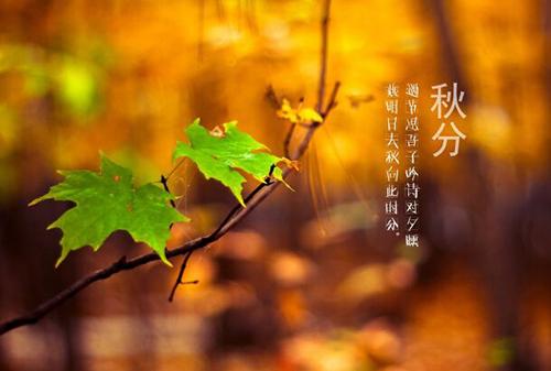 关于秋分节气的习俗