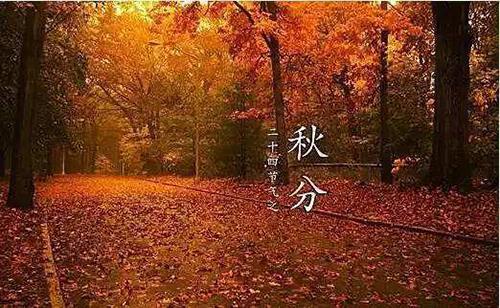 关于秋分节气的祝福句子