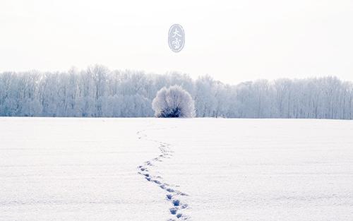 关于大雪节气的谚语