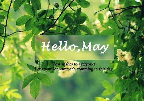 你好五月带字图片大全 五月你好文字图片 励志唯美图片大全图片