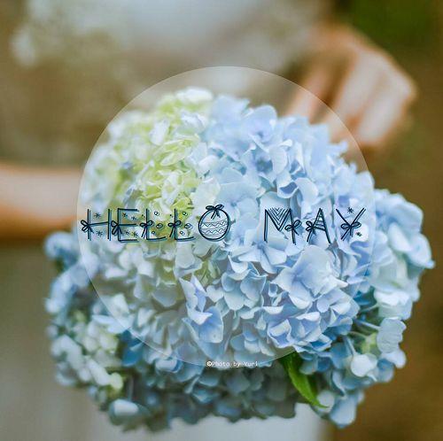 你好五月带字图片大全 五月你好文字图片 励志唯美图片大全