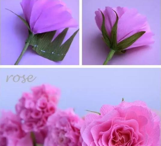 1.基本的皱纹纸是制作纸玫瑰的基础,首先需要将皱纹纸条叠落的放置在一起,然后使用订书机对纸条进行固定。   2.接着使用剪刀将纸条剪成如图所示的花瓣形,也可以根绝自己的需要变换花瓣的形状,需要用剪刀对制作纸玫瑰的皱纹纸进行一些加工。   3.纸玫瑰花的质感也许要通过加工体现出来,用镊子处理皱纹纸,使得其花瓣边缘有弯折、扭曲的感觉。   4.