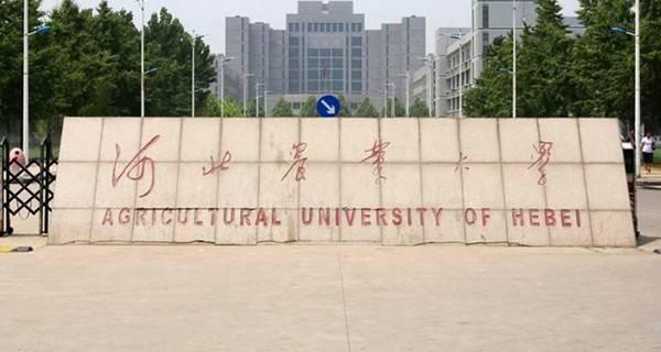 2017河北省二本理科大学排名 最新数据