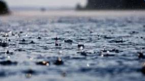 关于描写雨的句子有哪些_有关描写雨的句子