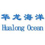 华龙海洋工程