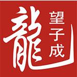 望子成龙教育集团