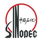 武汉石油logo